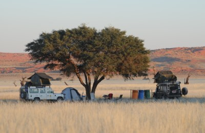 southern africa overland campers tree wejpg