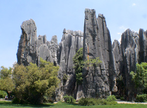 china stone forest